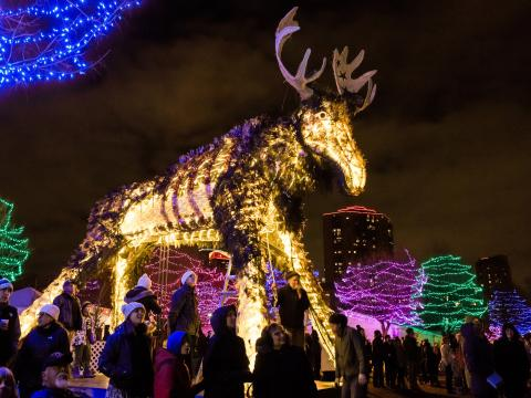 A neon moose at HoliDazzle