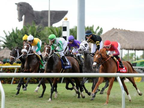Carrera de caballos en la Pegasus World Cup Invitational en Gulfstream Park, Hallandale Beach