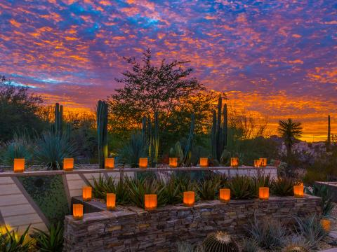Illuminated luminarias at sunset during Las Noches de las Luminarias in Scottsdale, Arizona
