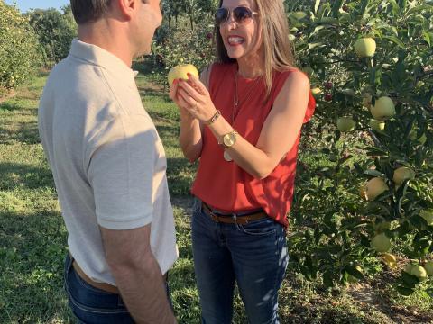 Recogiendo manzanas frescas en el Apple Festival en Reid's Orchard en Owensboro, Kentucky