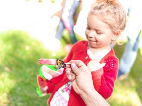 Interactuando con una mariposa en Butterfly Flutterby en Grapevine, Texas